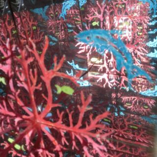 LabirynthBox CoralSea3