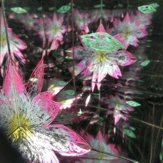 LabirynthBox Flower3