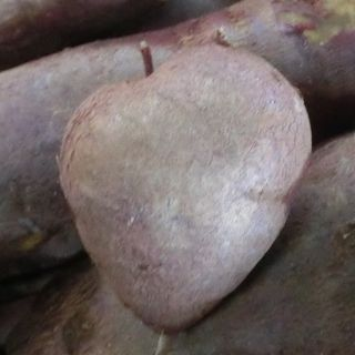 Heart-shaped sweet potato