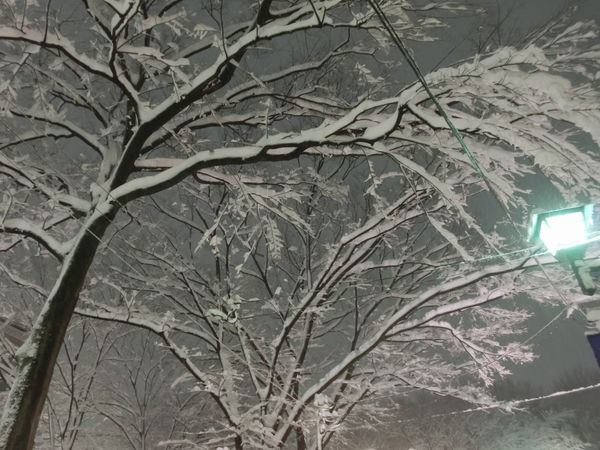 Snow20140214d