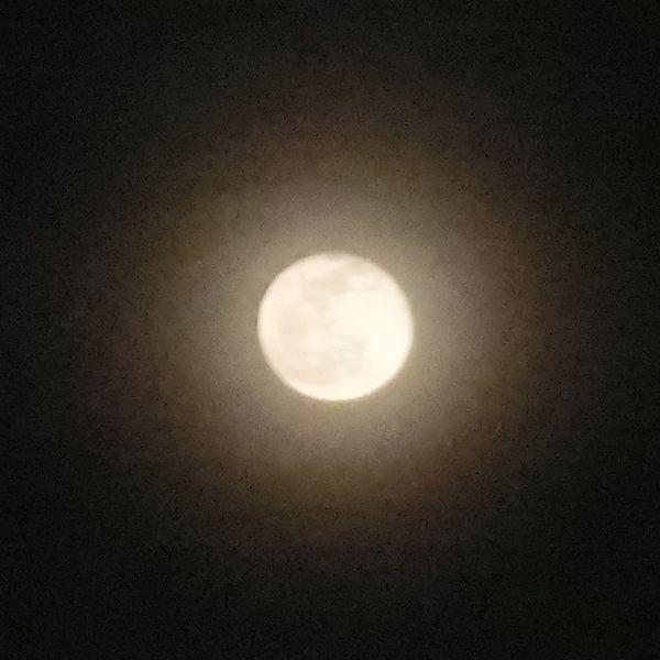 Moon_halo