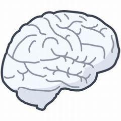 Brainm