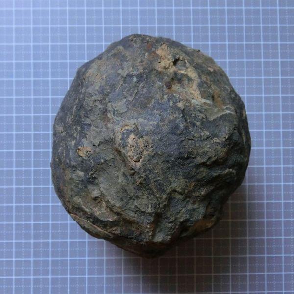Trilobite_nodule_1