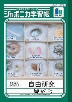 ジャポニカ学習帳「自由研究」貝がら
