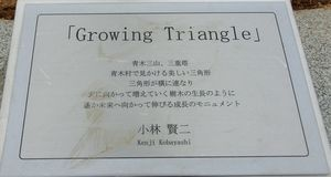 Growing_triangle_170108b