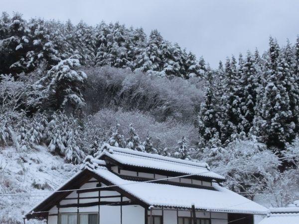 Aokimura170109a