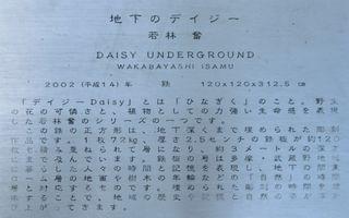 Daisyunderground02