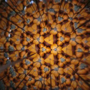 Kaleidoscope190326f12