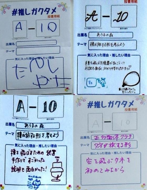 Oshigakutamea10