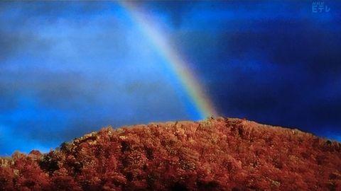 Rainbowdarkside