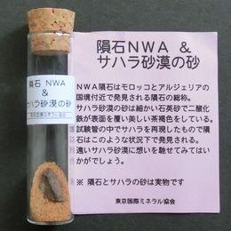 NWA Meteorite & Sahara sand