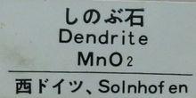 Dendrite02
