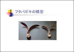 Flyingseedsmodel03