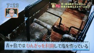 Aogasimamegaten6