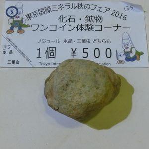 Nodule191001d