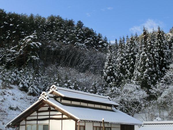 Aokimura170109c