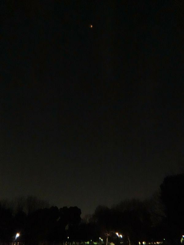 皆既月食を撮りに公園へ1801312219