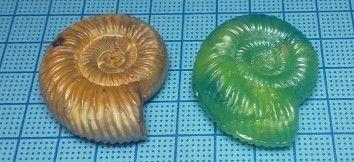 Ammonitereplica2020a