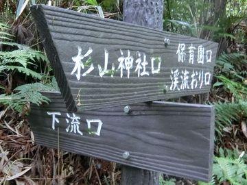 Jingashitak61
