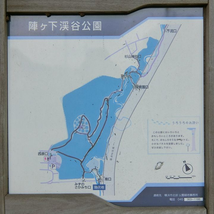 Jingashitak79
