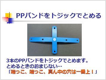 Pptidb07
