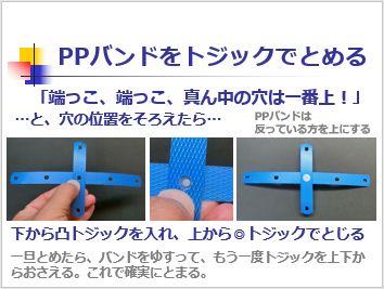 Pptidb08