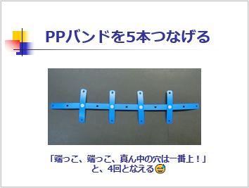 Pptidb09