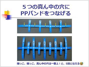 Pptidb10