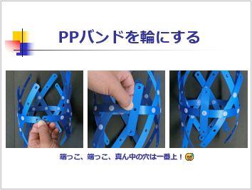 Pptidb14