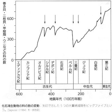 Seiginoseibutugaku50